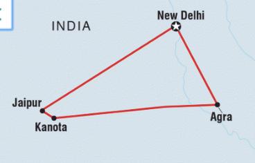 turismo vegano india