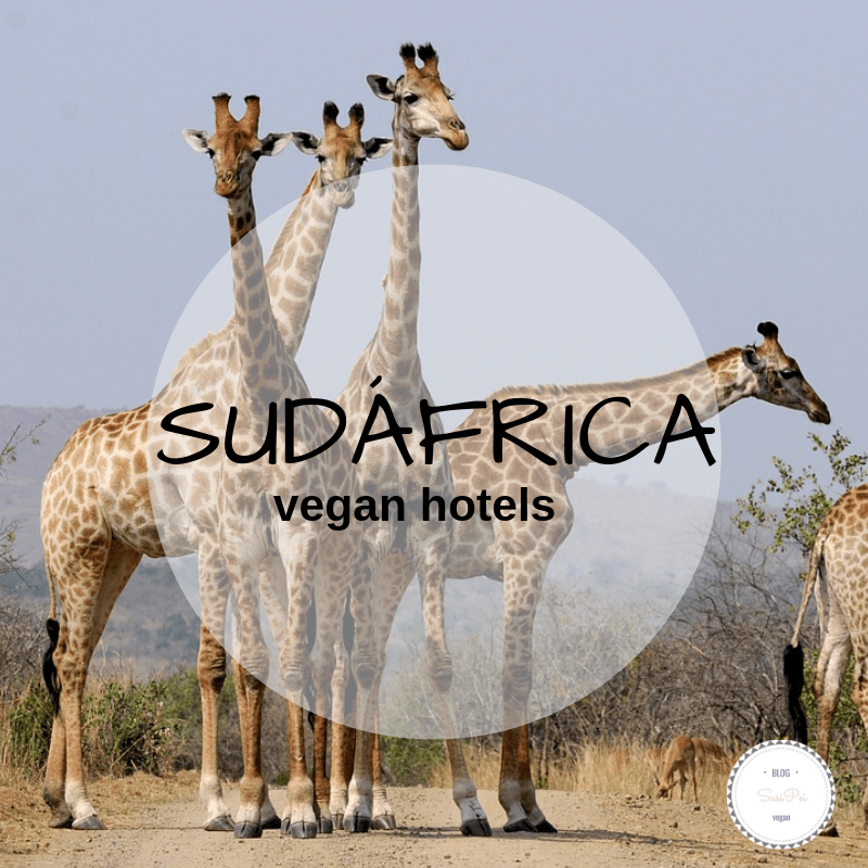 viajes veganos sudáfrica