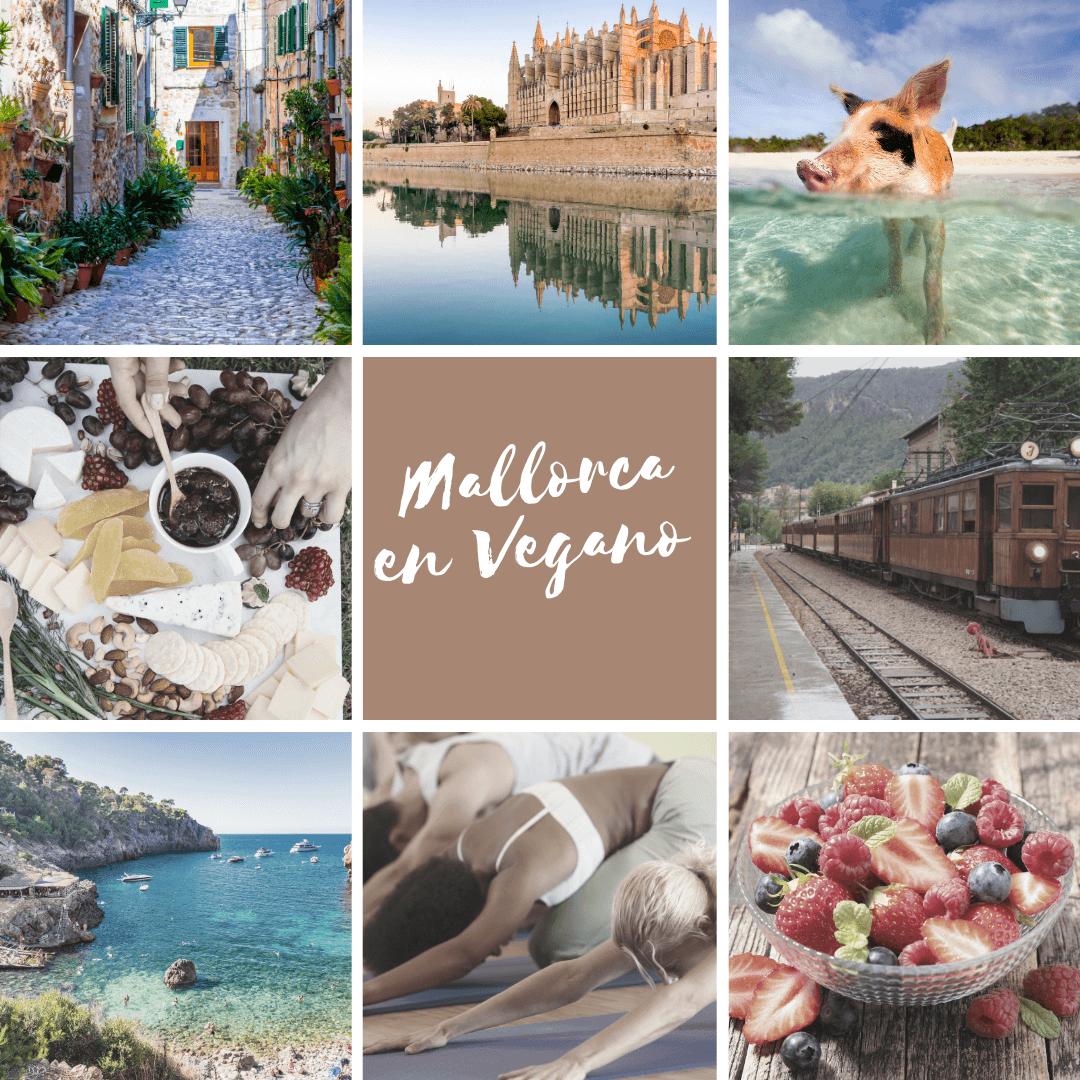 vegan Mallorca