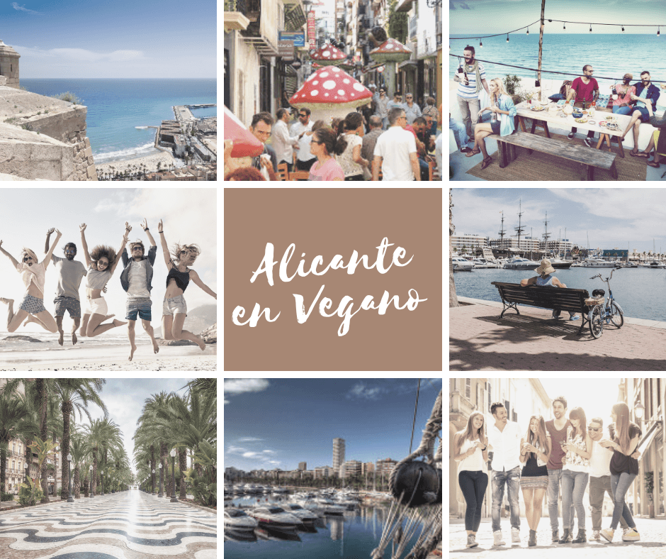 vegan alicante