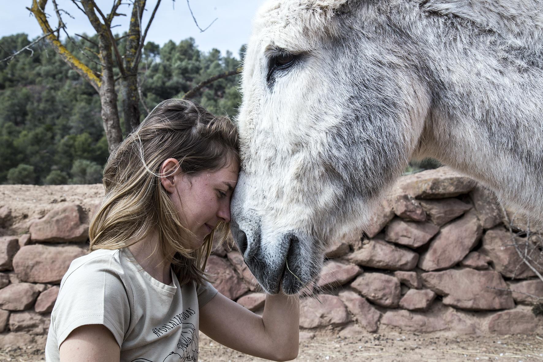 caballo y voluntaria
