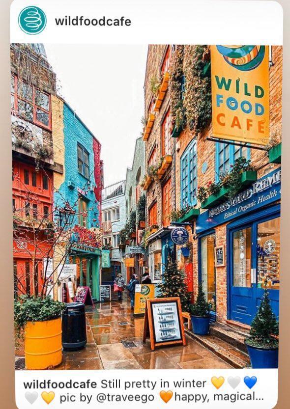 wild food cafe