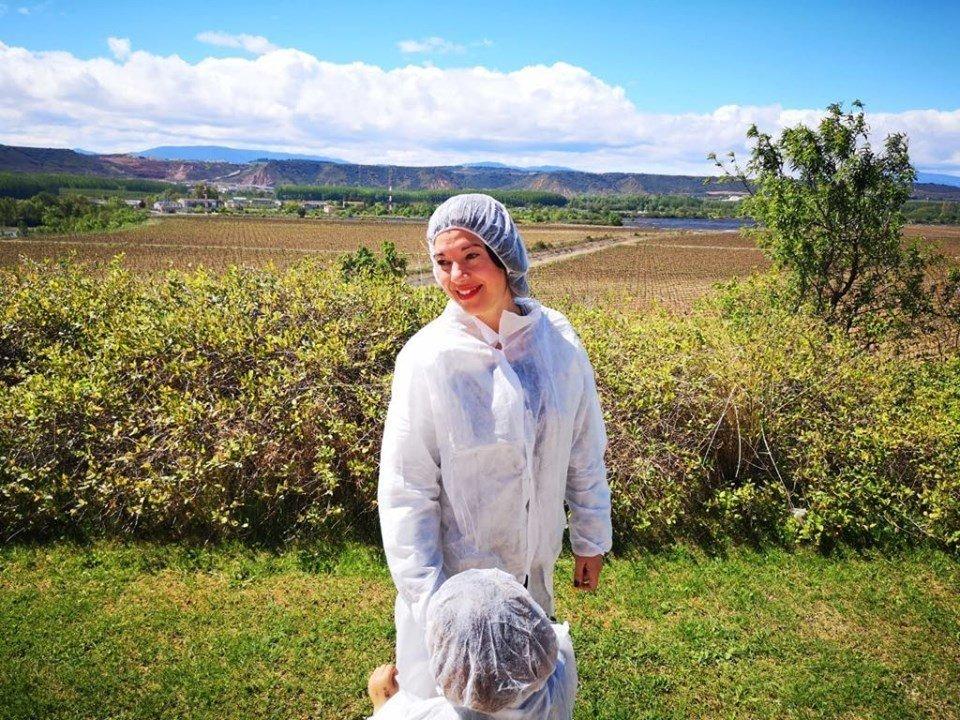 Visitar bodega en La Rioja