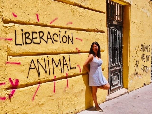 Guia vegana Alicante