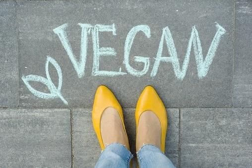 calzado vegano