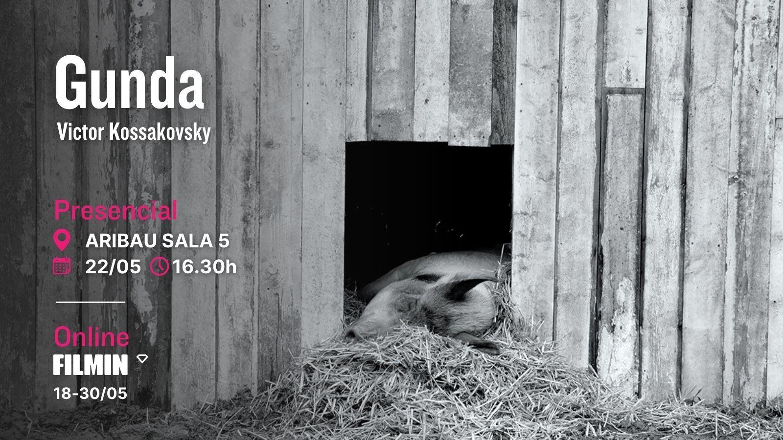 Gunda documental